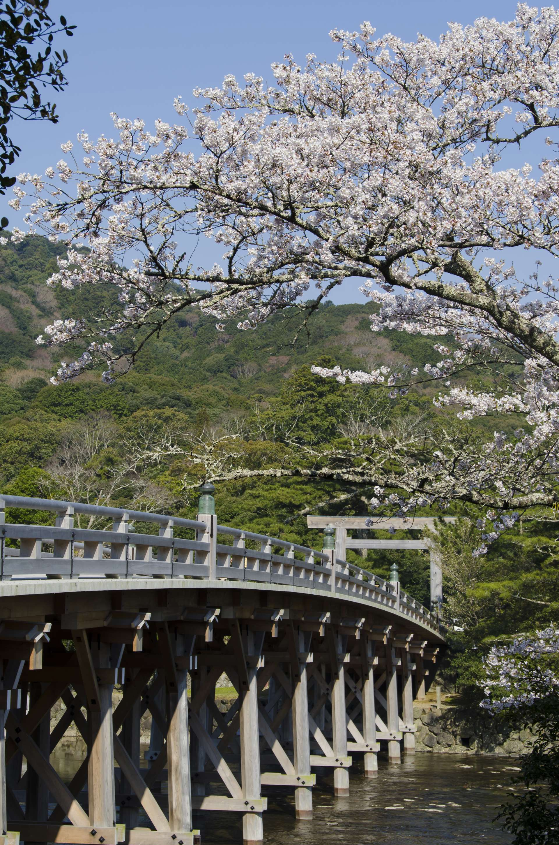 Uji Bridge to go over to Ise Grand Shrine