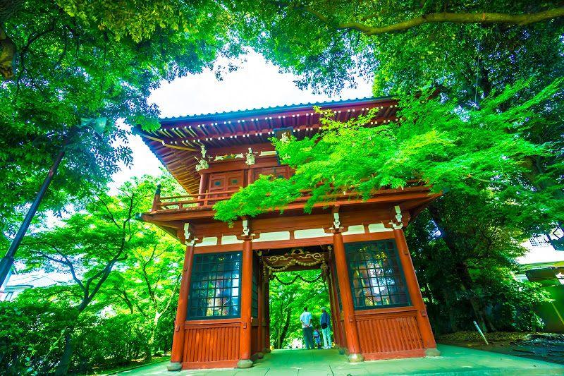 本土寺的入口仁王门
