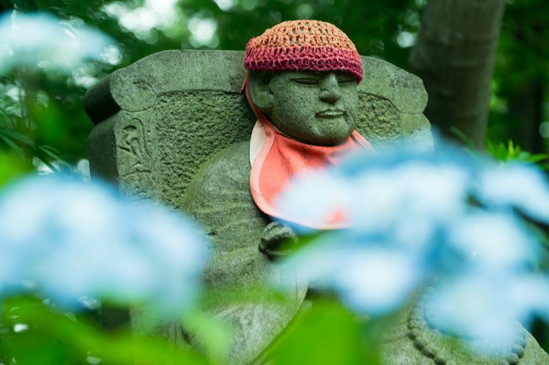 地藏菩薩和紫陽花