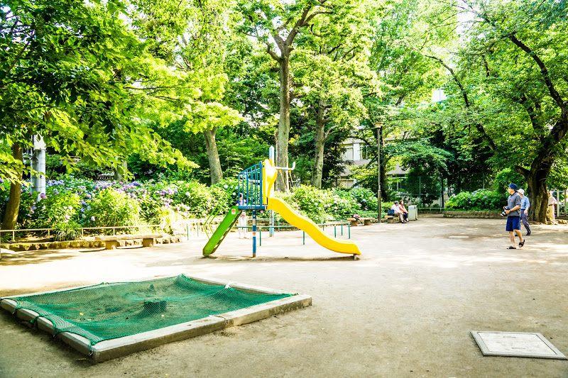 Hakusan Park's hydrangeas