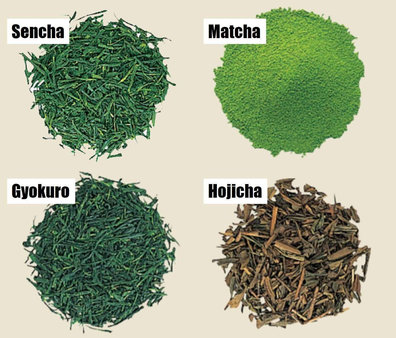 """""""Green tea"""" is divided in to different kinds depending the ways the leaves are processed."""