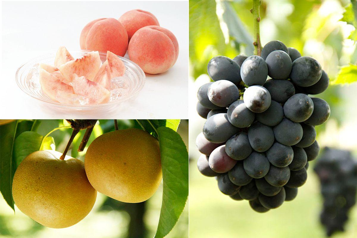 Juicy fruits from Fukushima