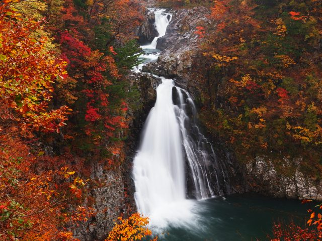A Fall Foliage Viewing Spot in Akita: Hottai Falls amid the Mountain Blanketed with Fall Foliage, the best location for Movies in Japan!
