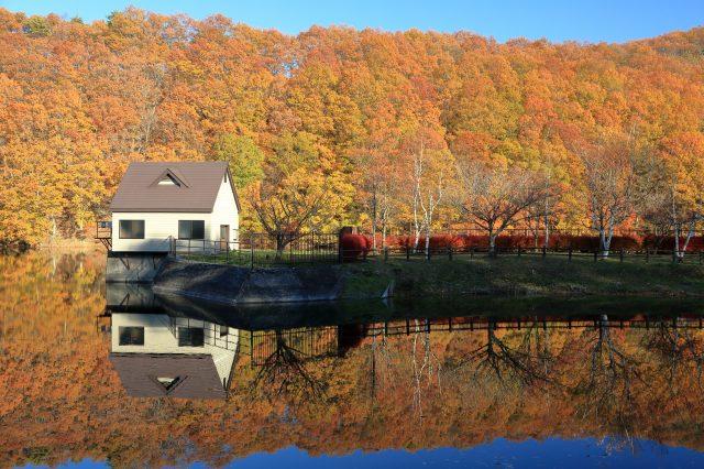 晚秋的长老湖