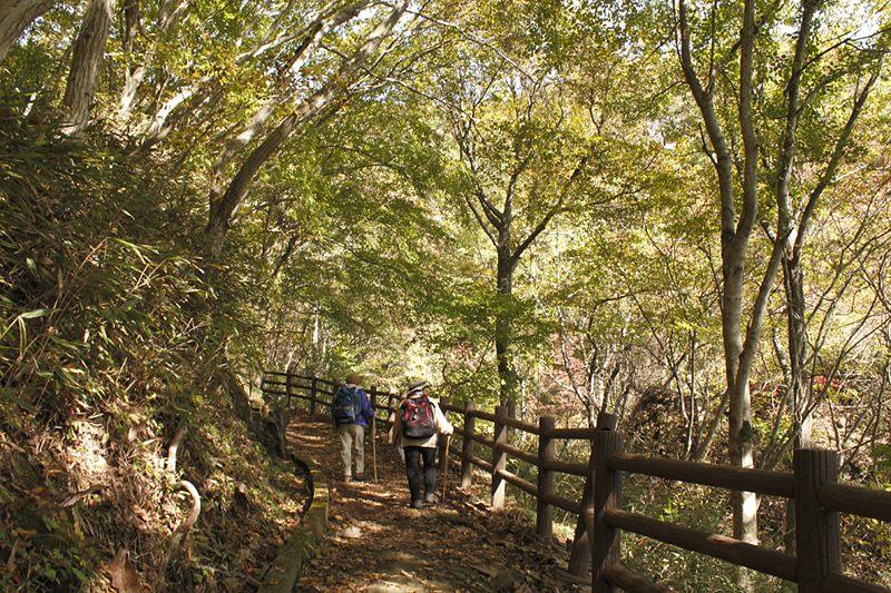 Ascent of Mount Ryo