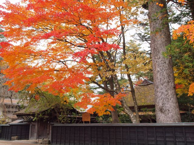 Odano House and fall foliage