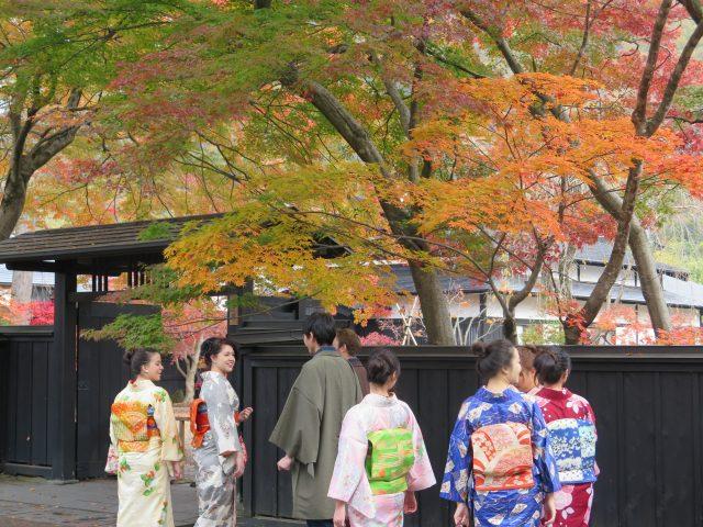 换上和服赏枫的游客