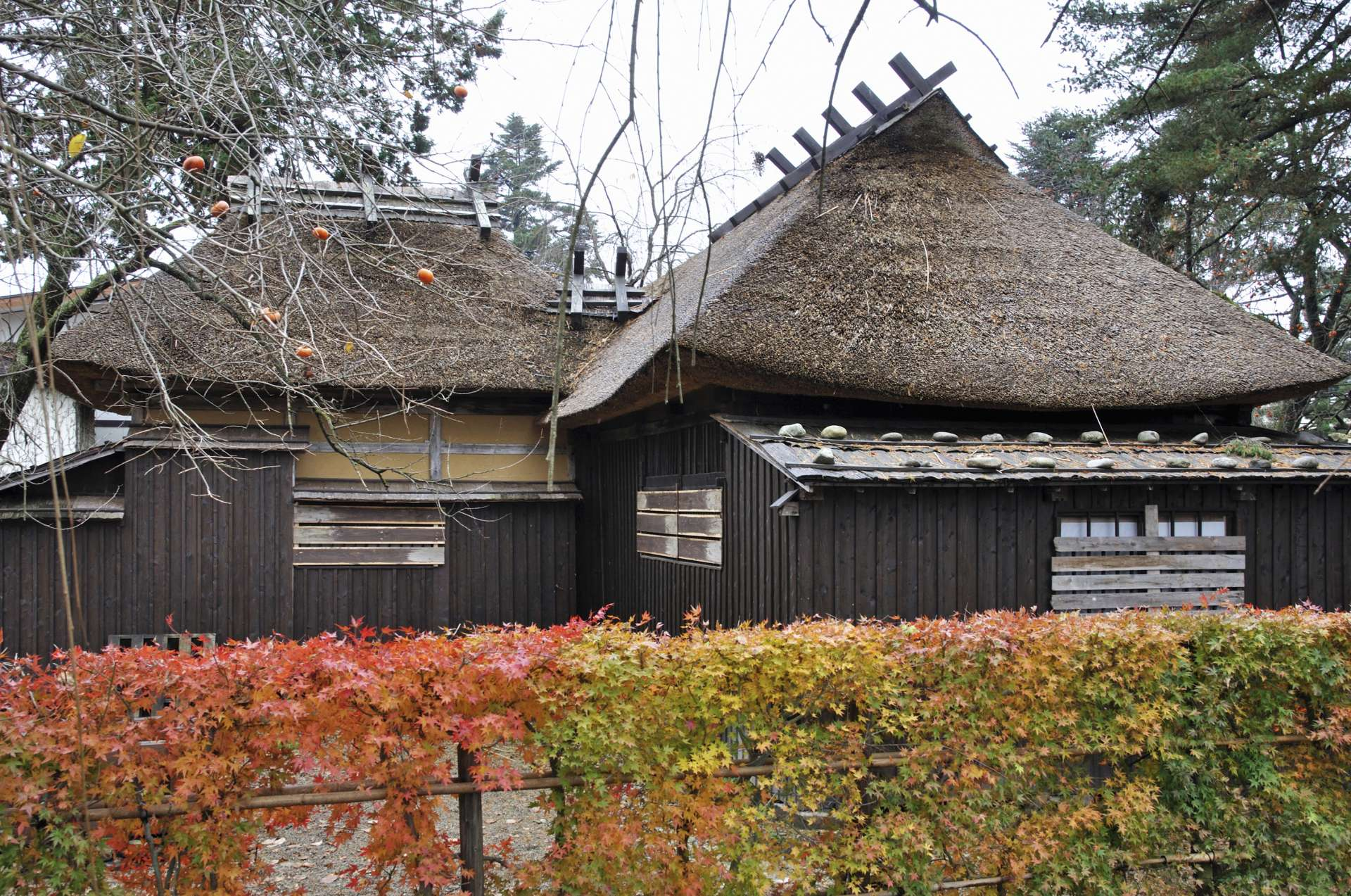 Matsumoto House and fall foliage