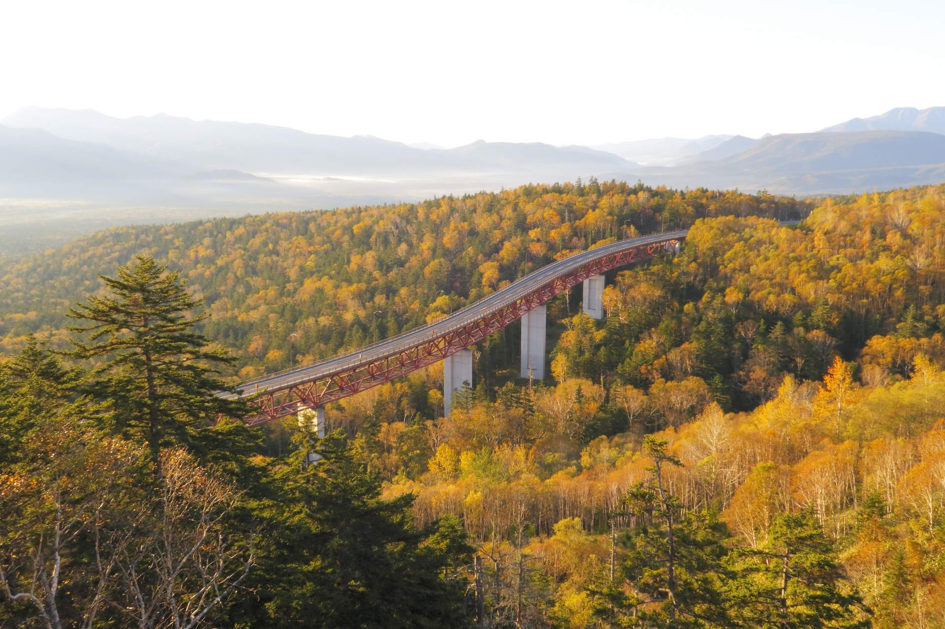 好像是架向天空之桥的松见大桥和红叶树海
