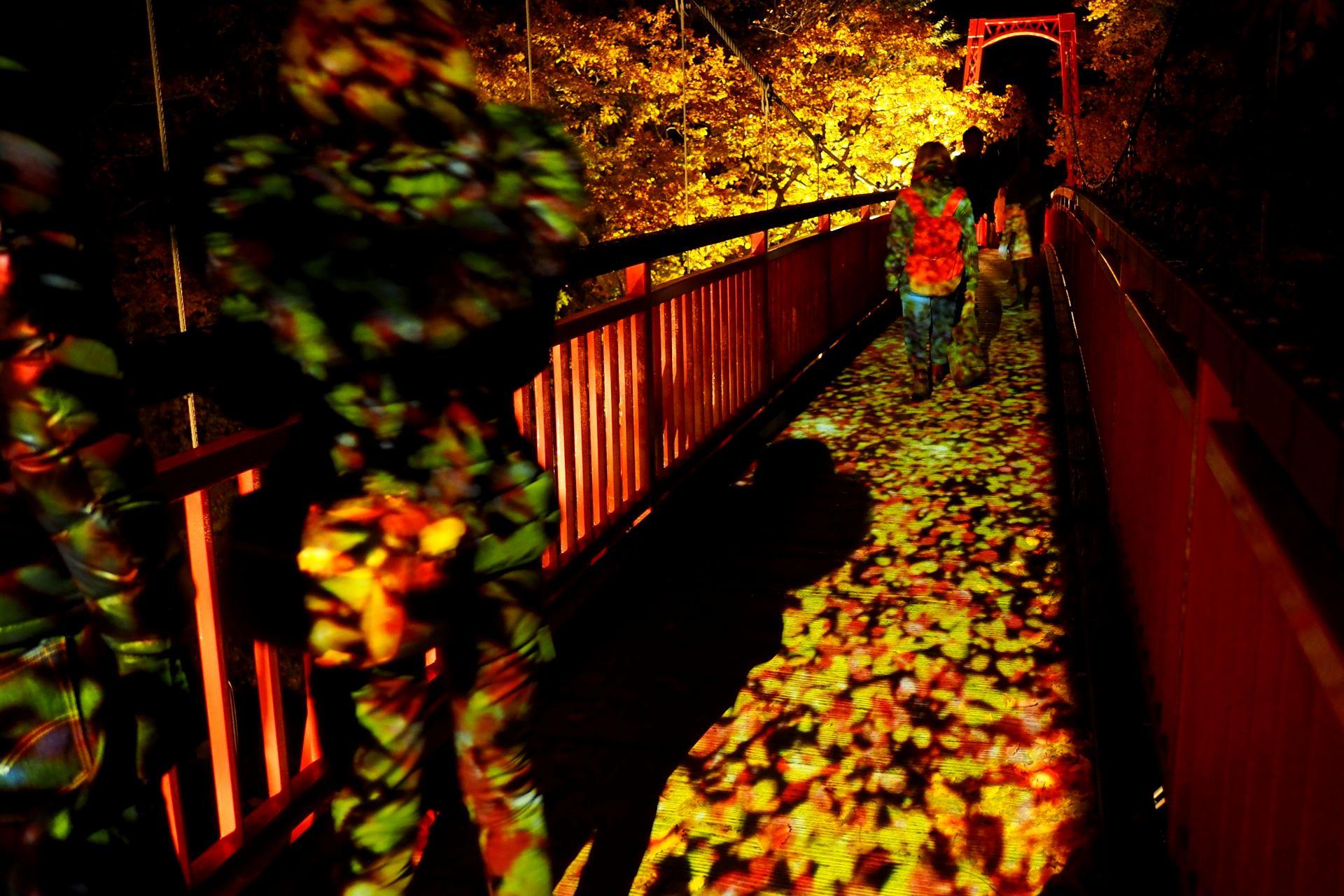 秋天之二見吊橋點燈 夢幻般的世界
