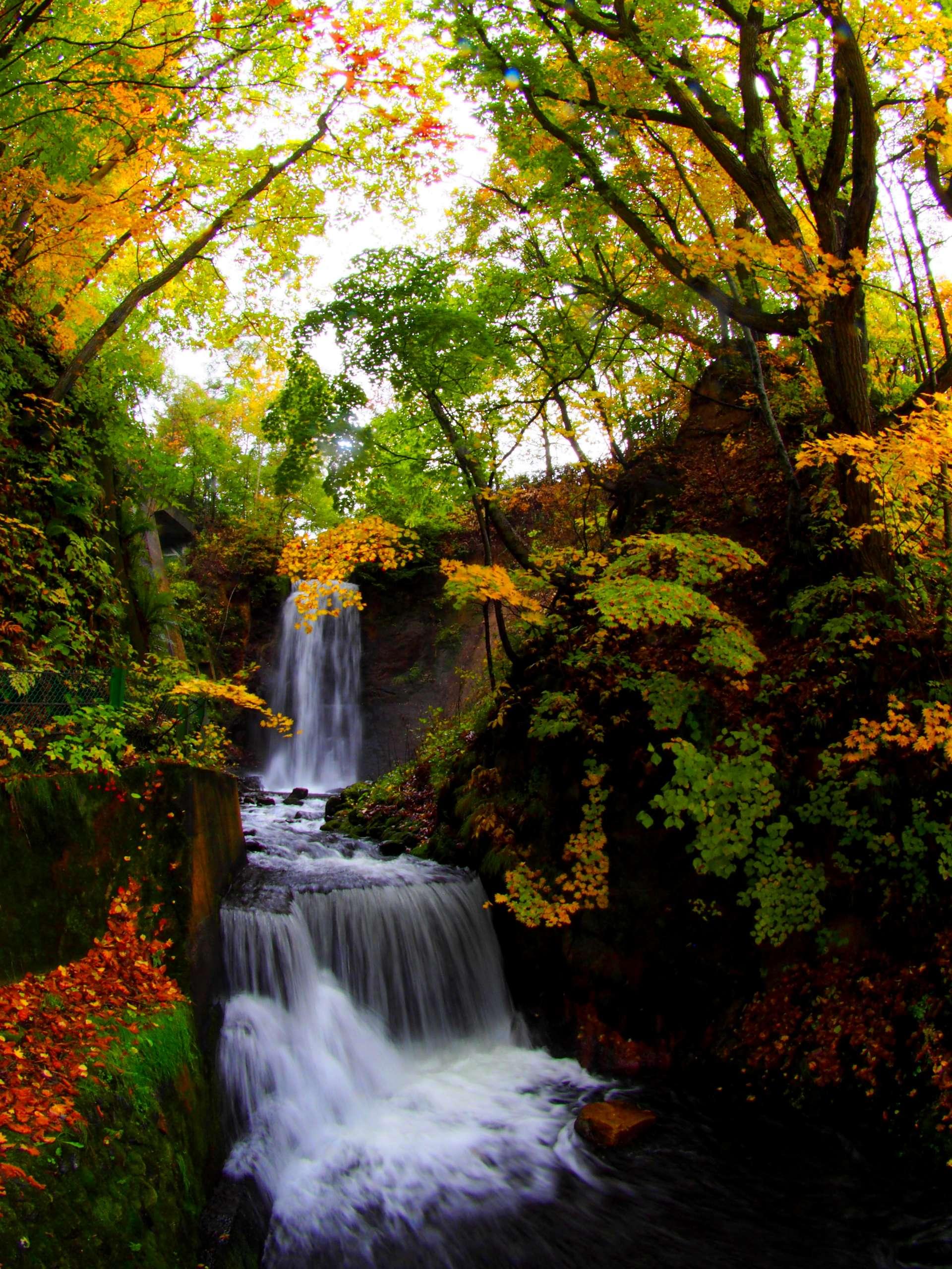 秋天的白絲瀑布♡