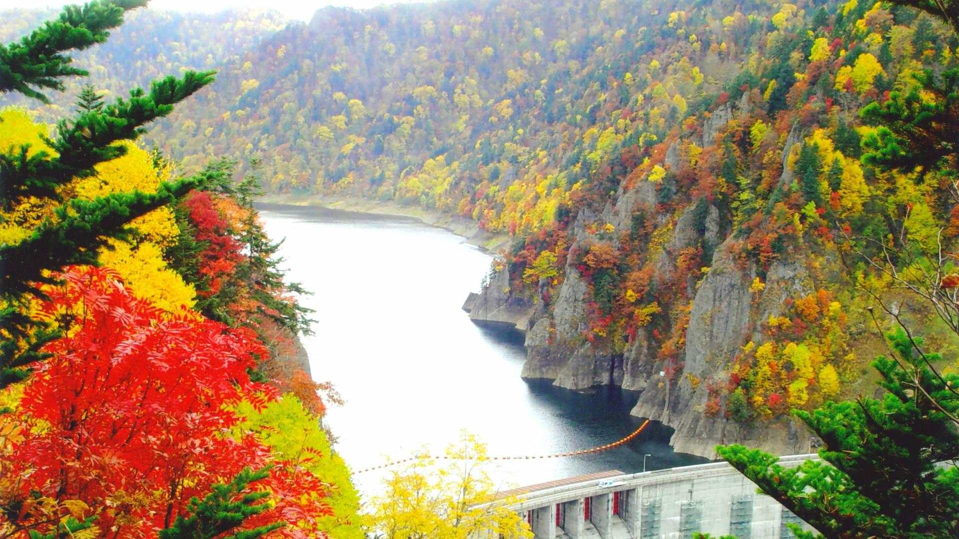 豐平峽水庫的紅葉