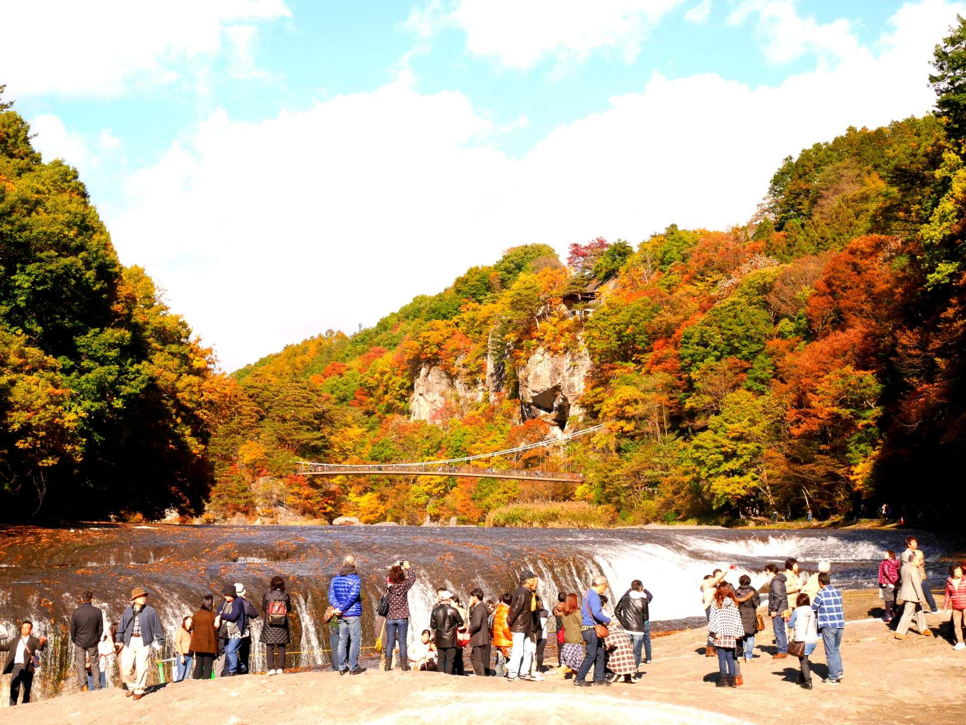 瀑布×红叶×吊桥