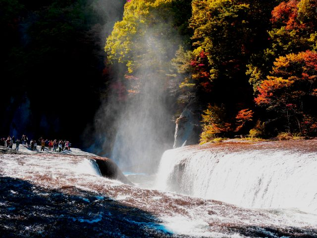 Autumn Leaves and a Roaring Waterfall