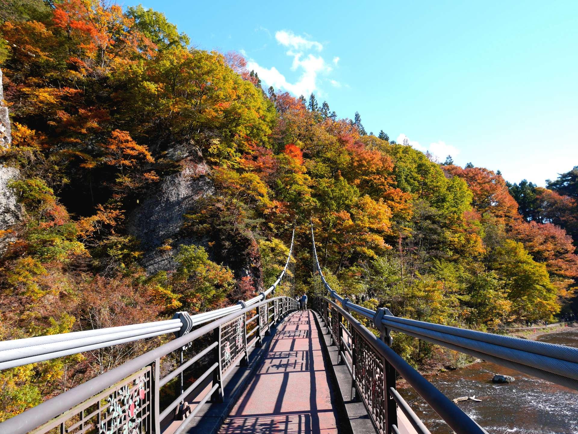 View from Suspension Bridge (Ukishima-bashi)