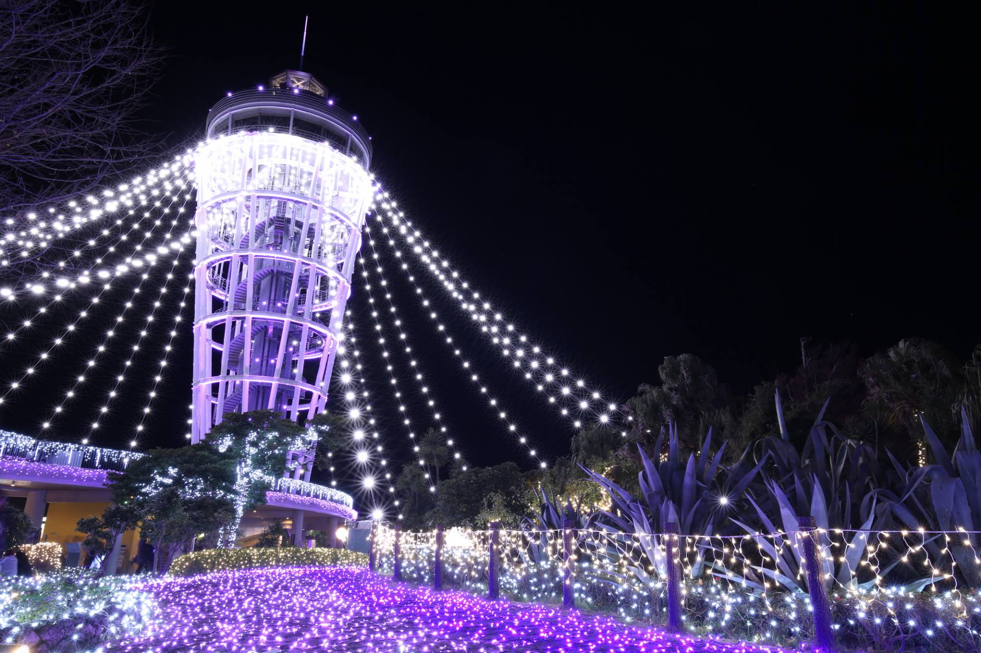 """""""Tunnel of Light"""" at the Enoshima Sea Candle"""