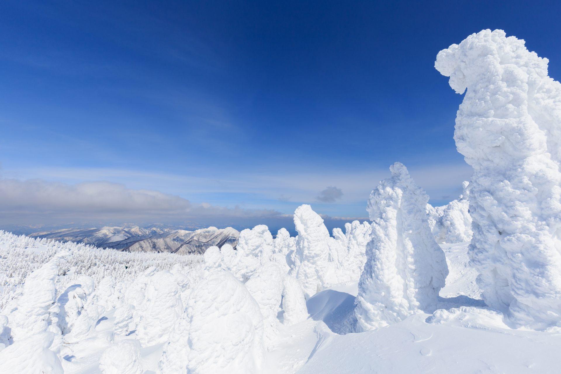 樹冰景觀在眼前擴展