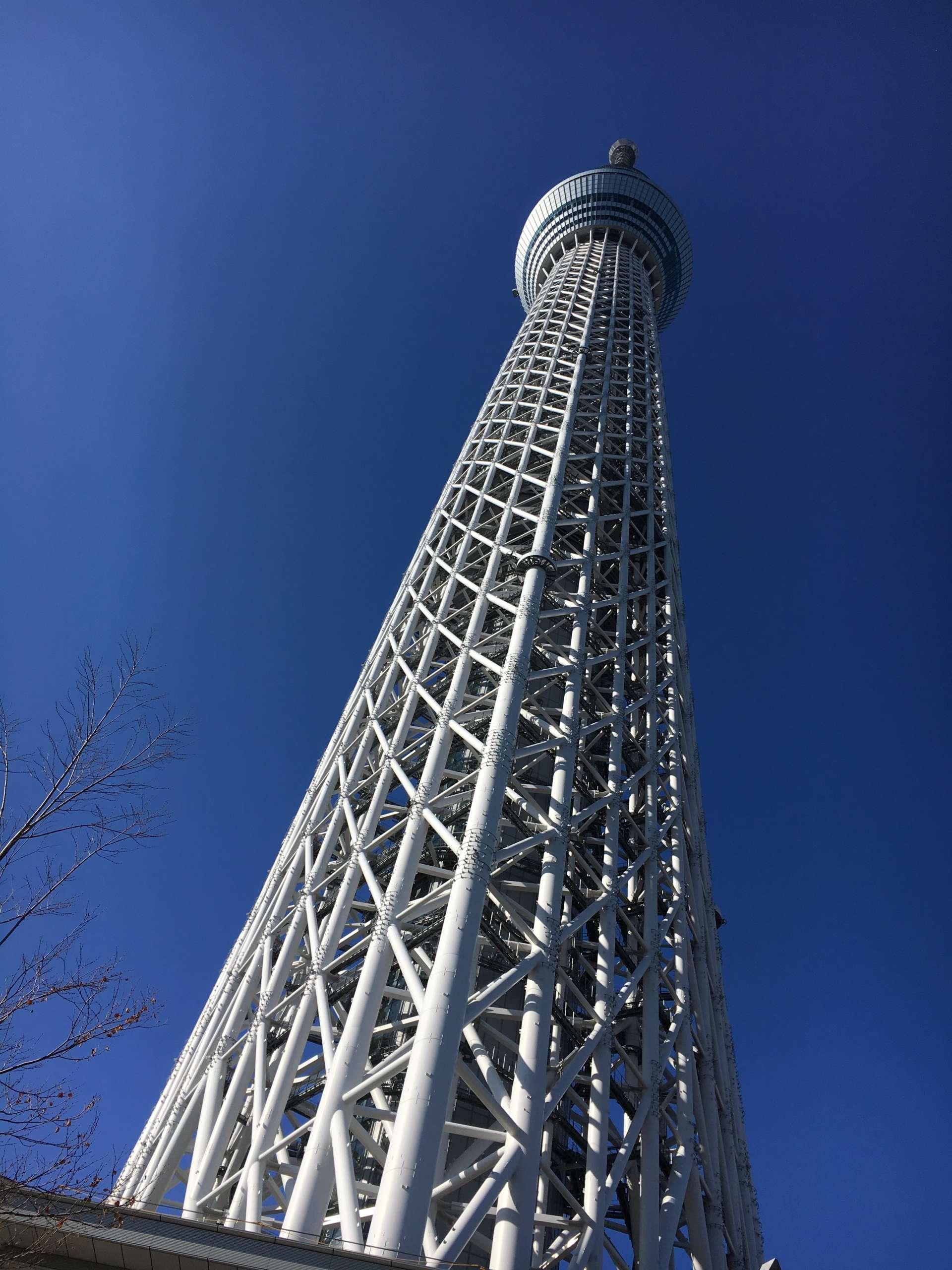 跪在地上拍到的东京晴空塔