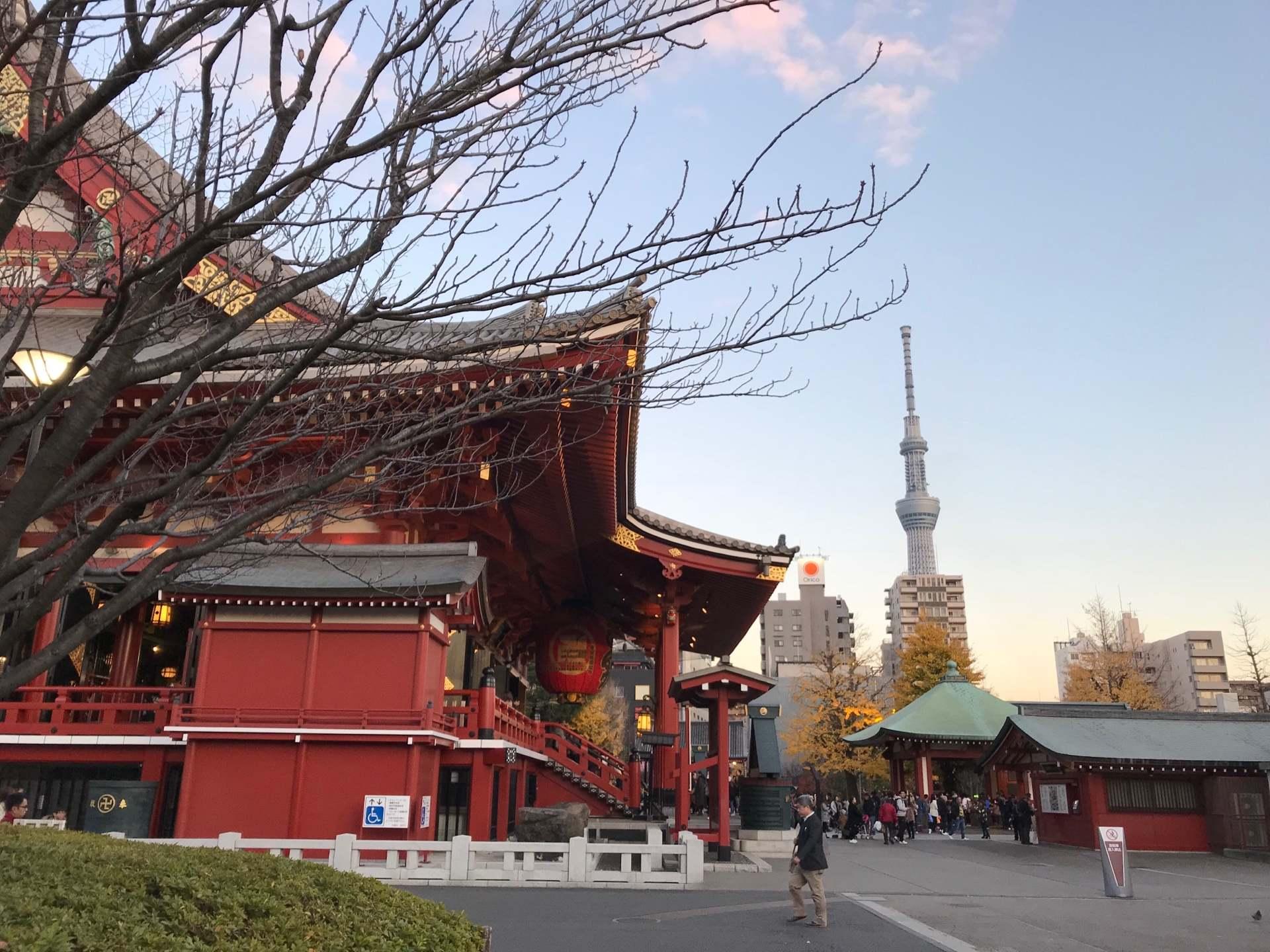 传统文化与现代科技完美融合的美丽景致