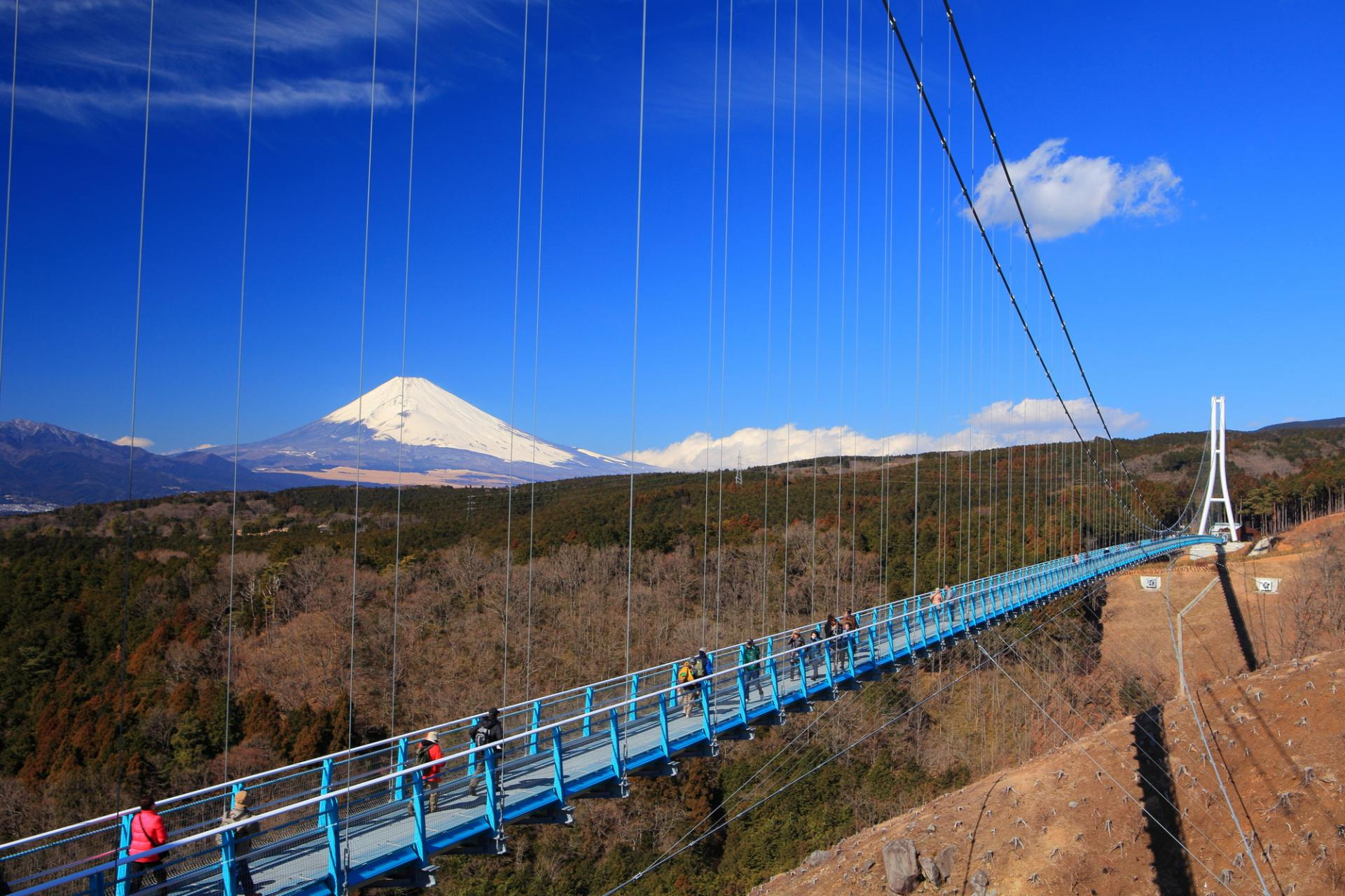 The once-in-a-lifetime view of beautiful Mount Fuji (Mishima Suspension Bridge)