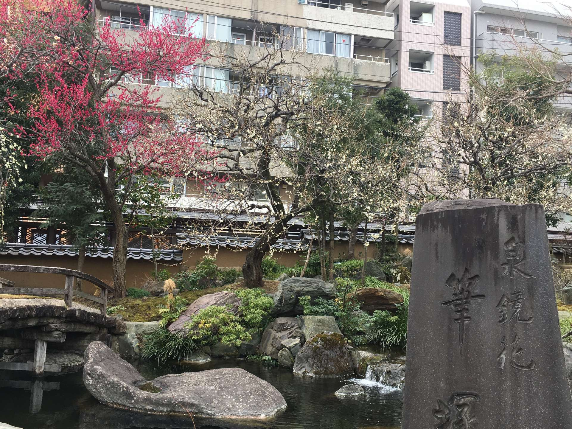 石碑和梅花