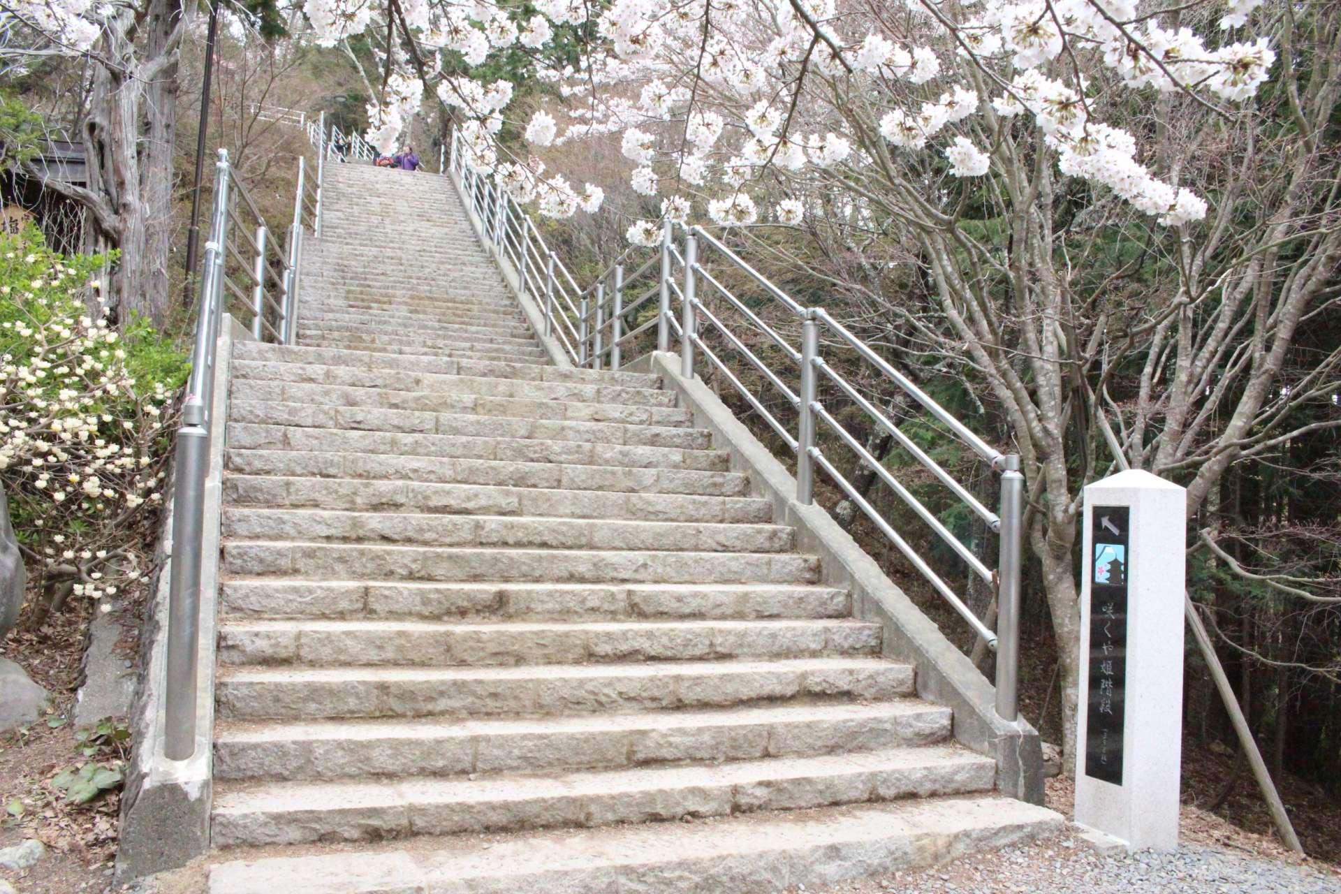 咲くや姫阶梯
