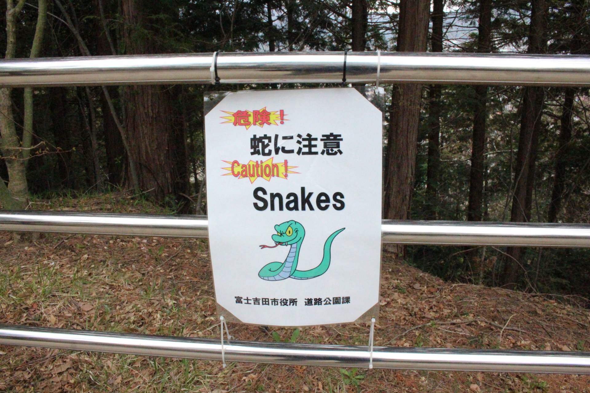Beware of snakes!