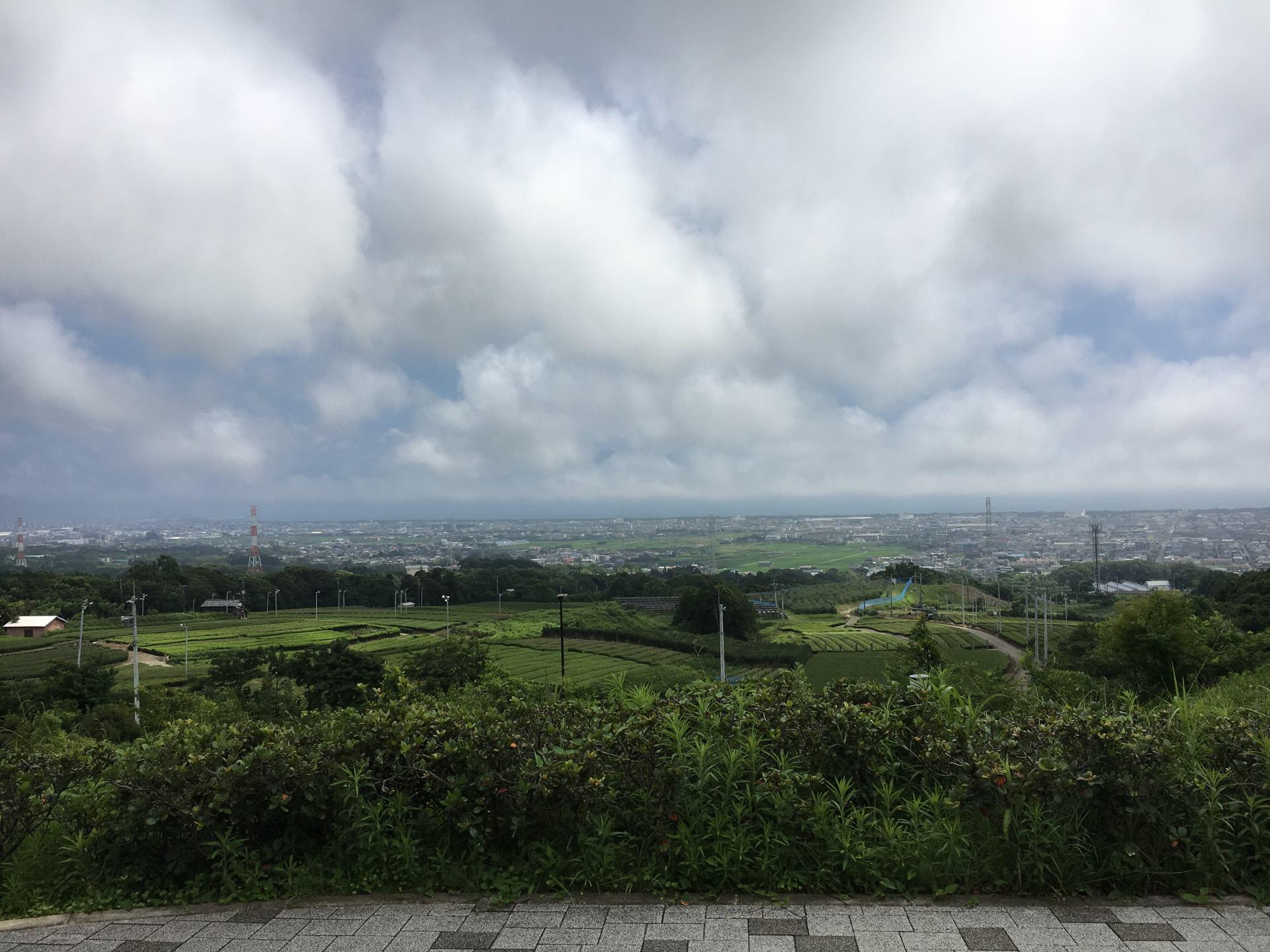 從休息站露天看台放眼望去的景色