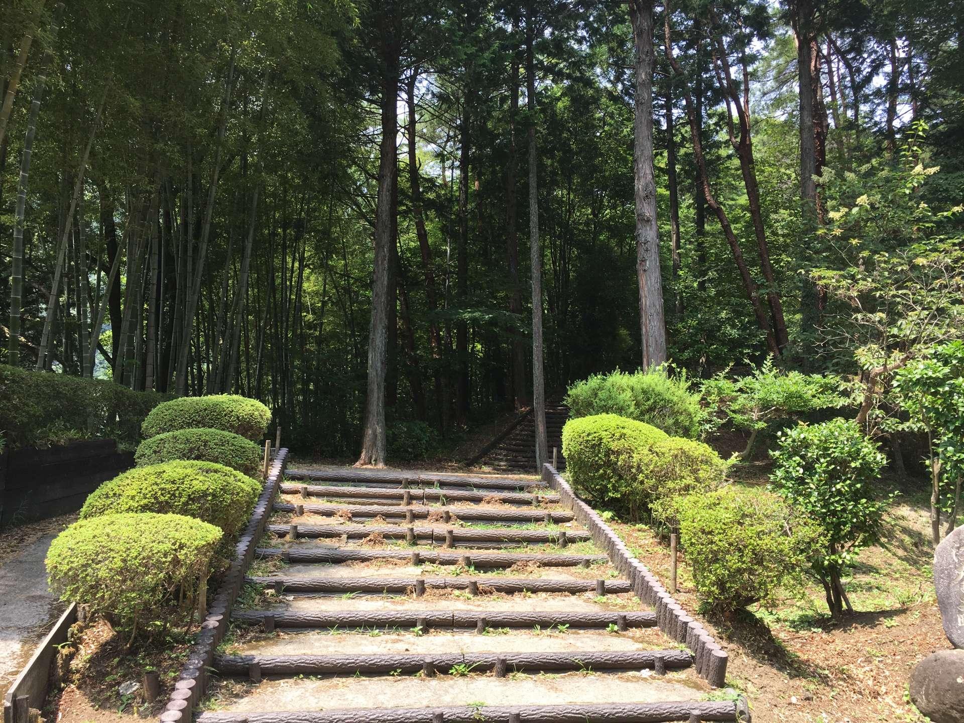 順著台階上去可找到隱身於樹林中的小神社