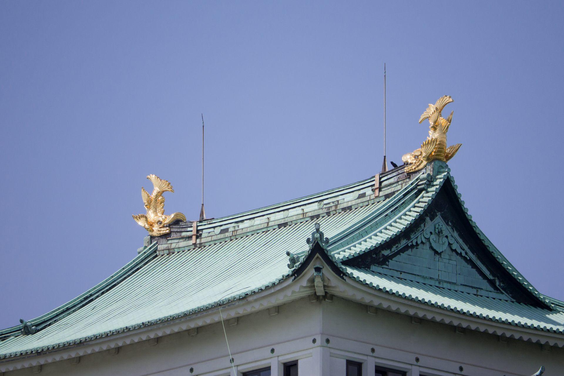 在名古屋城屋頂閃閃發光的2匹金鯱
