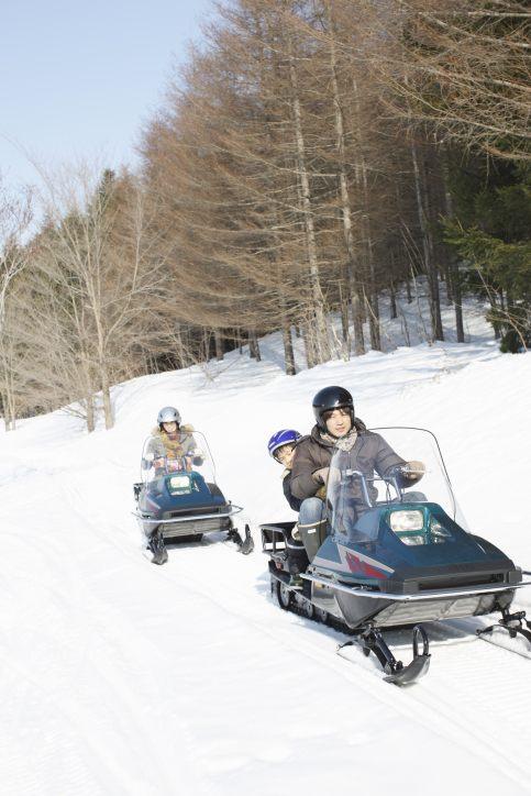 冬季:動力雪橇 ※圖片為示意圖