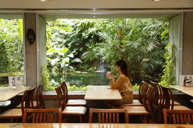 Interior of the café with a view of the park's greenery