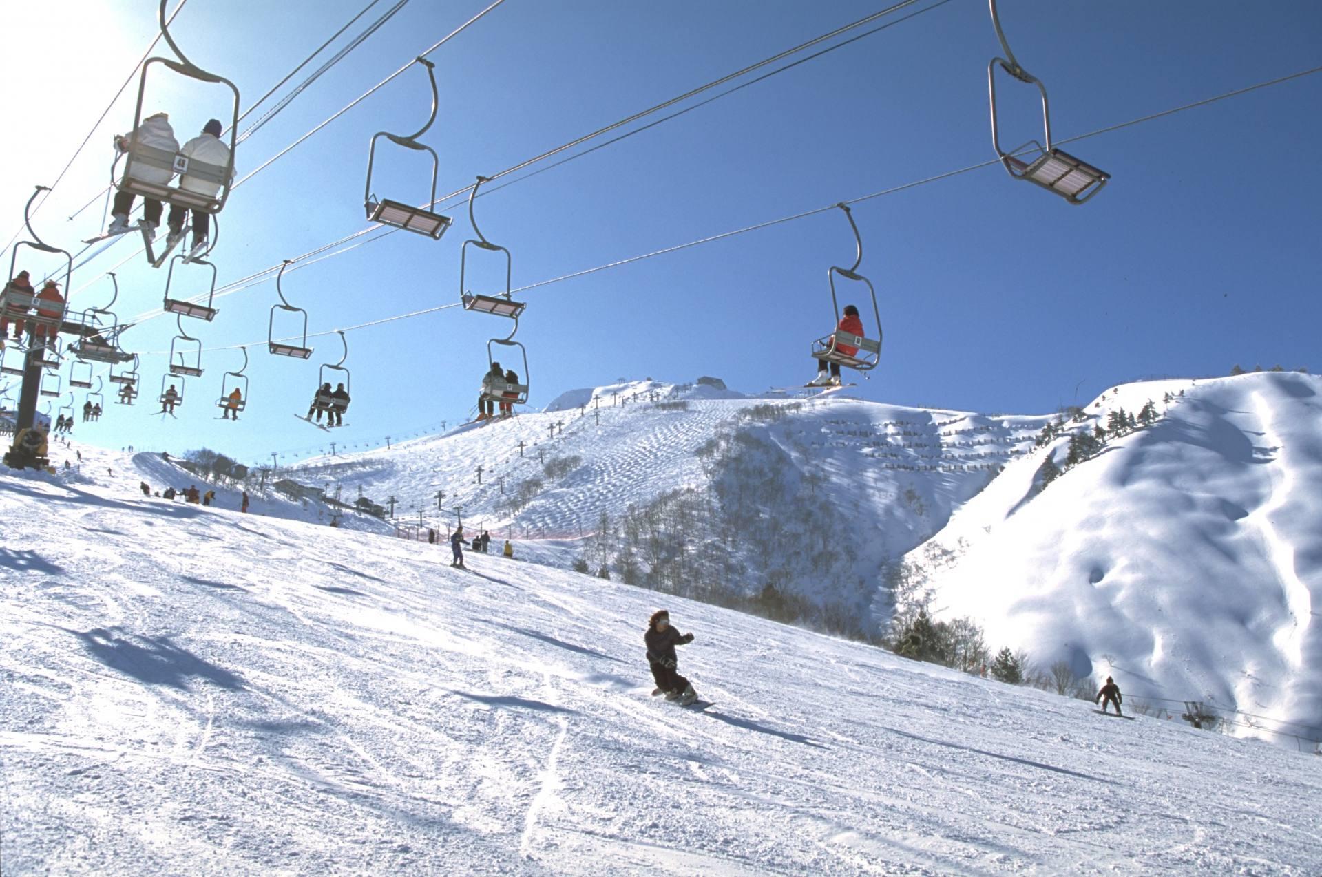 滑雪高手們在挑戰奧林匹克滑道。