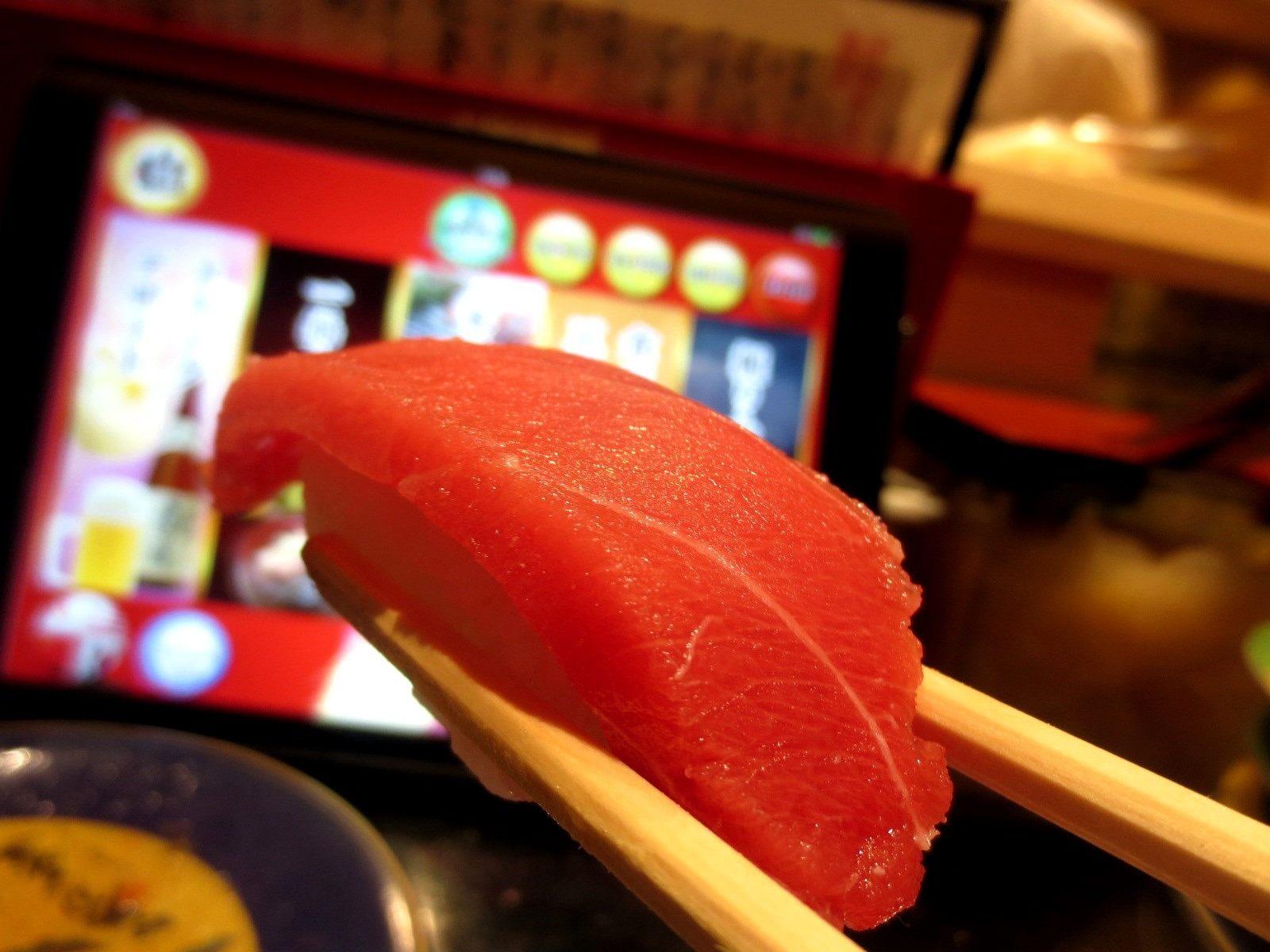 the red flesh tuna