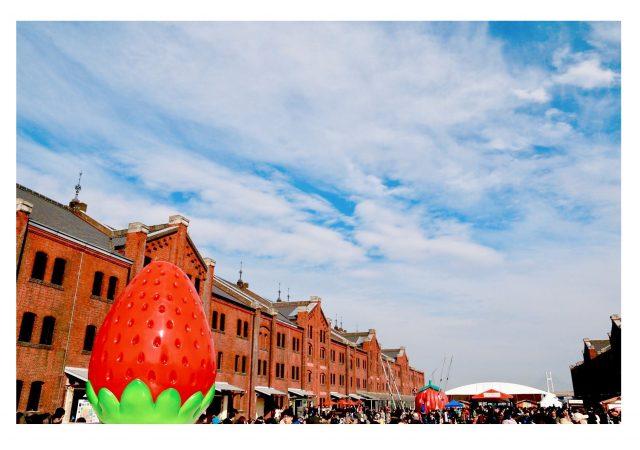 在橫濱吃遍草莓的11天快樂時光!「YOKOHAMA STRAWBERRY FESTIVAL 2019」