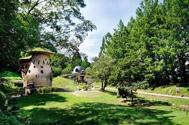 琦玉、簡直就像童話般的世界!「朵貝・楊笙曙光兒童森林公園」