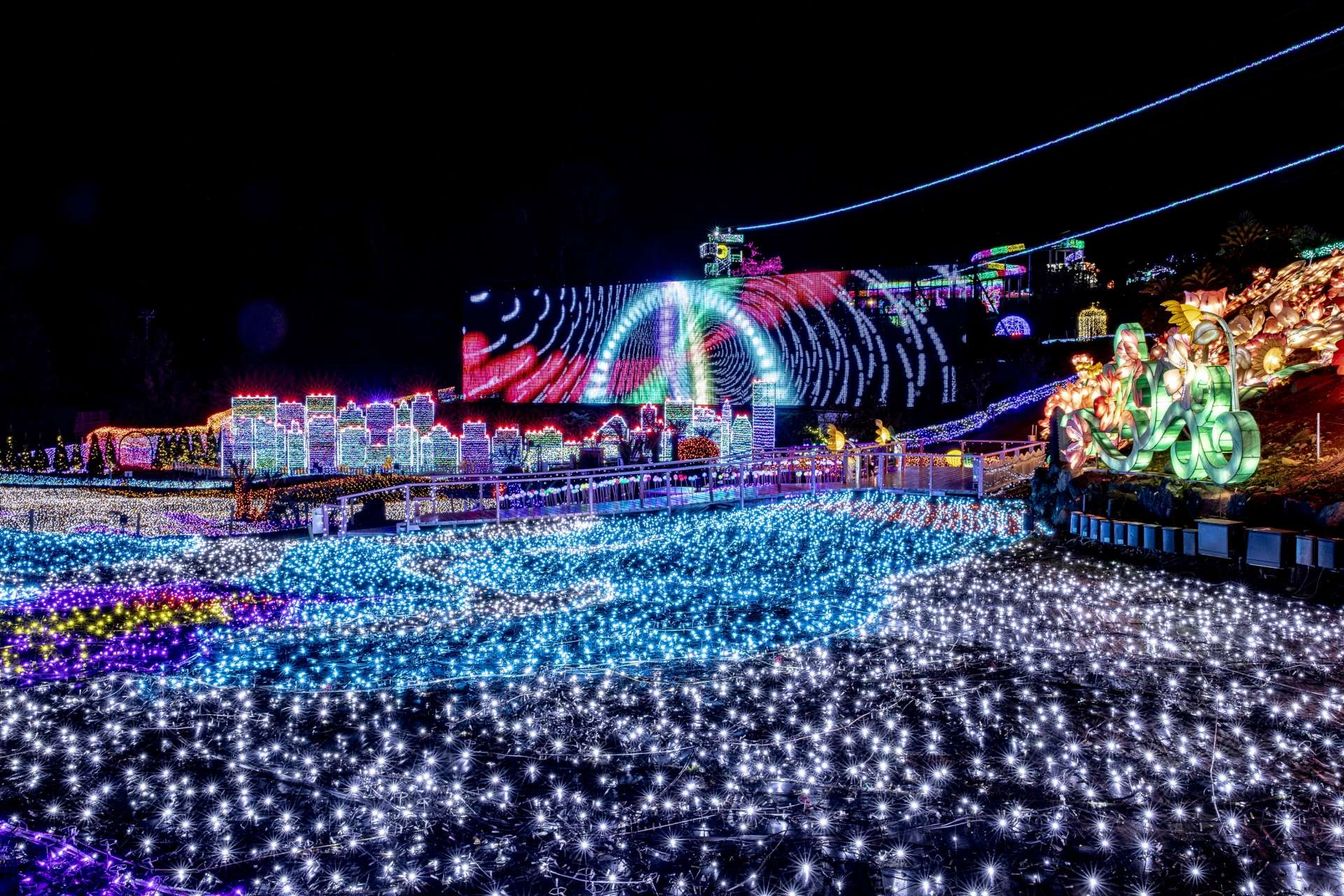 Hands-on illumination events have become a huge hit on social media, and the real thing is so much more fun than you can imagine!