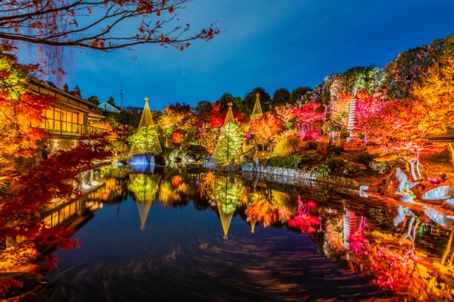 Three Autumn Leave Spots in Tokyo Perfect for Uploading to Social Media