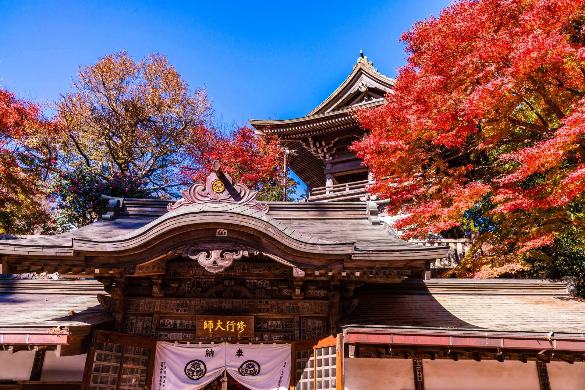 Yakuou-in and autumn leaves on Mt. Takao