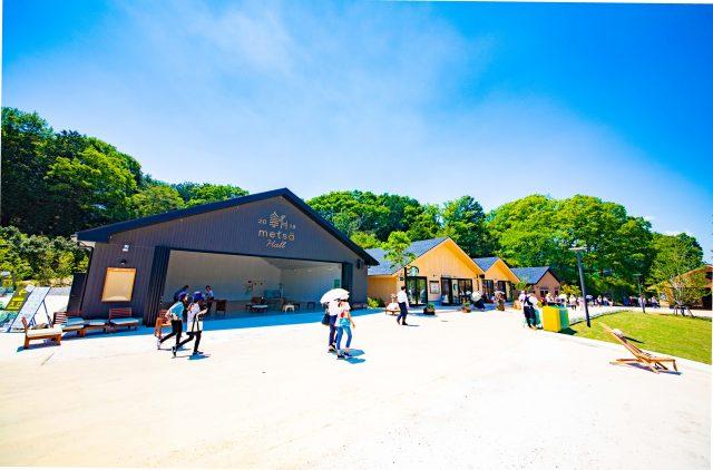 園區內有著各種餐廳和商店,只是逛逛也很開心!