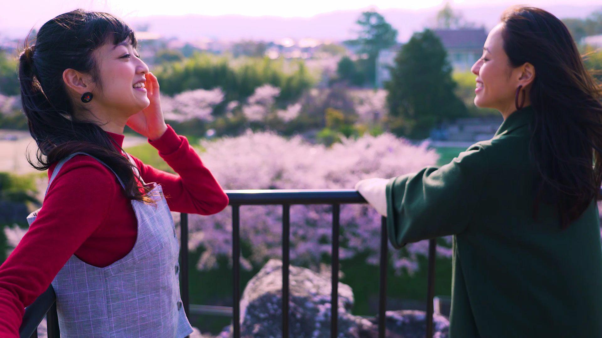 天守台展望施設から桜を見下ろし、気分爽快