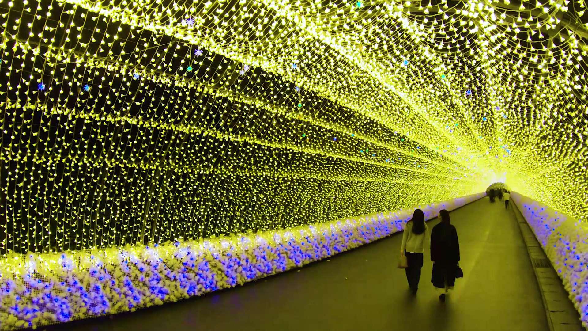 規模壯大的燈飾秀也是必看美景