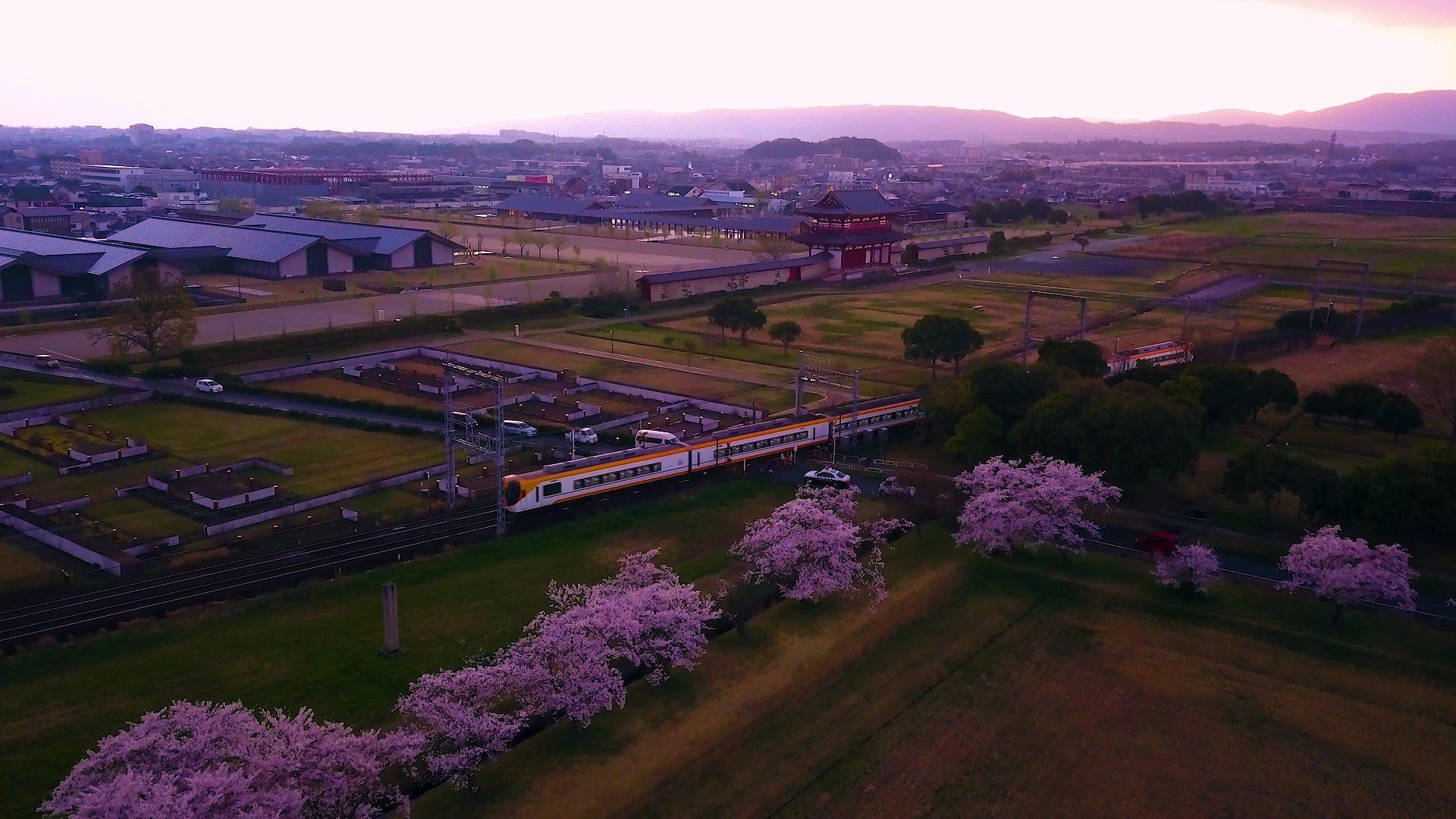Kintetsu trains are seen running through Nara in the spring.
