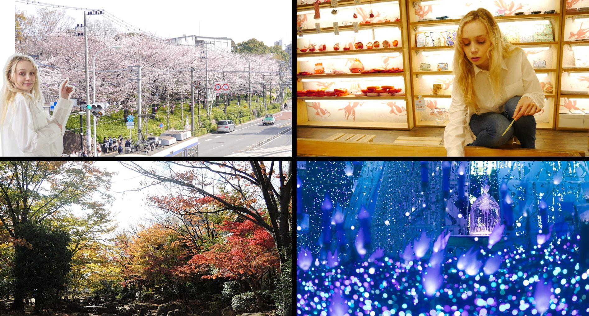 2020年的問卷主題為「季節」。春夏秋冬哪個觀光路線最受歡迎?