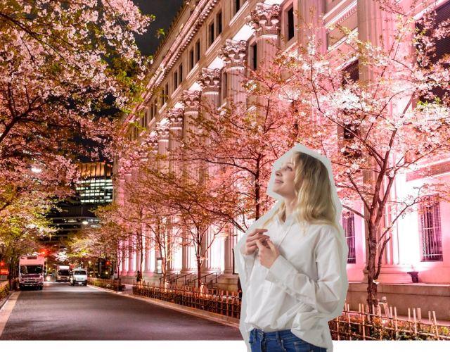 【2020年版】從問卷中選出來的東京人氣No.1觀光路線!