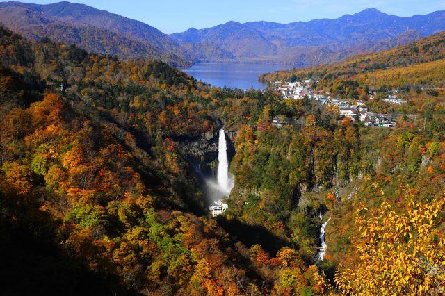 秋天(在明智平觀景台上拍的照片)
