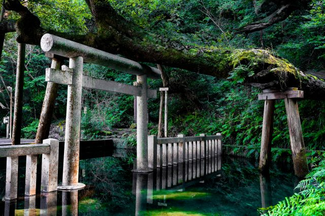 Mitarashi Pond