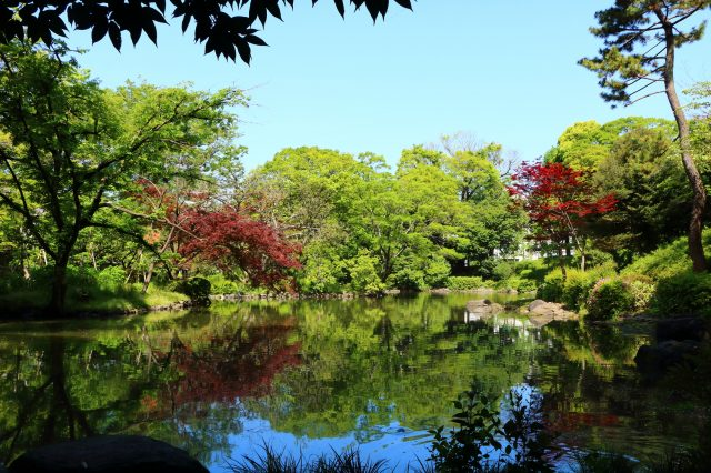 Japanese Garden with beautiful seasonal scenery