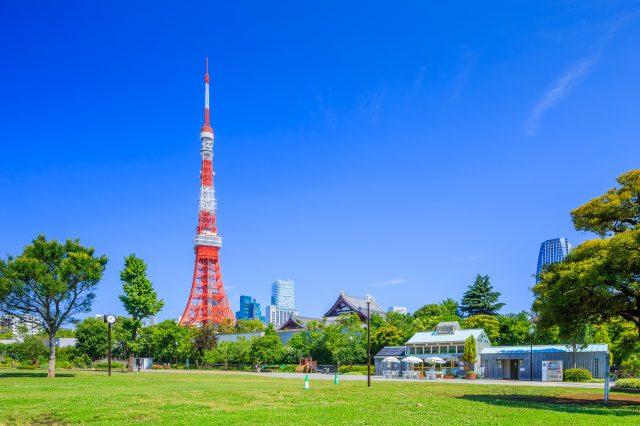 從芝公園望到的東京鐵塔