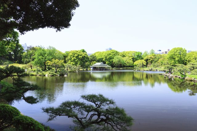 """Kiyosumi Garden""; a stroll garden around a big pond"